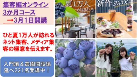 【集客編オンライン3か月コース】成幸するブルーベリー農園講座シリーズ